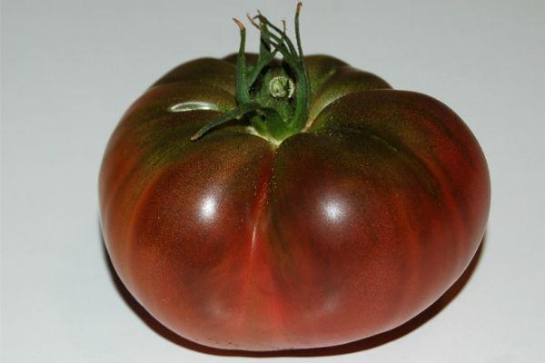 Tomate noire de crim e collectif d 39 urgence - Noir de crimee ...