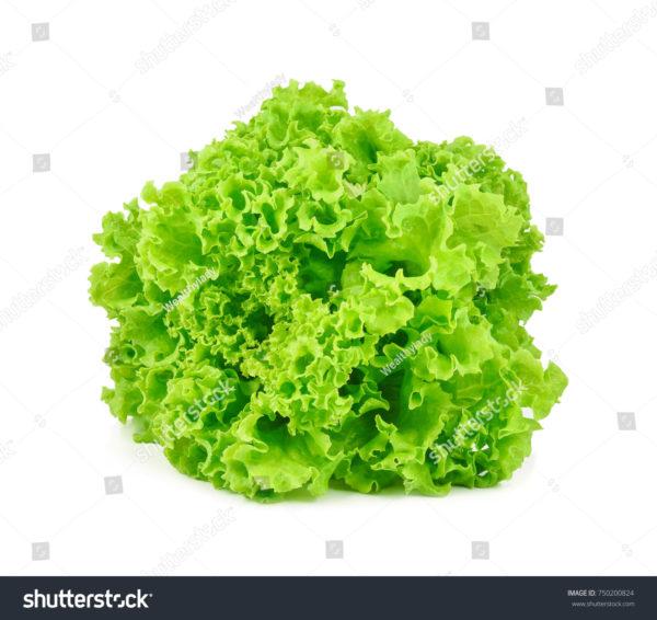 ollectif dUrgence Salade Frisée