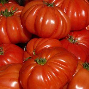 Collectif d'Urgence Tomates Coeur de Boeuf