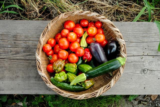 Collectif d'Urgence - Légumes de saison