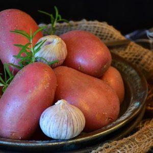 Collectif d'Urgence - Pomme de terre Rosabelle